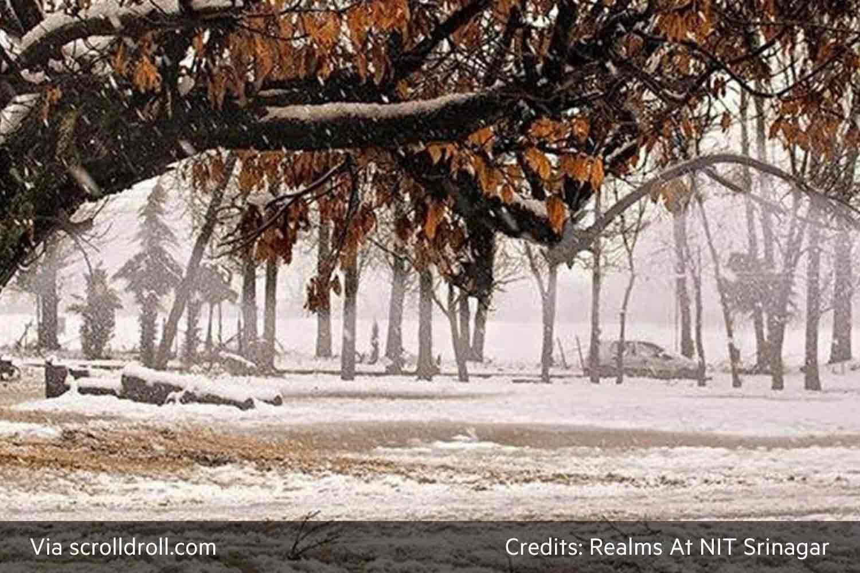NIT Srinagar (8)