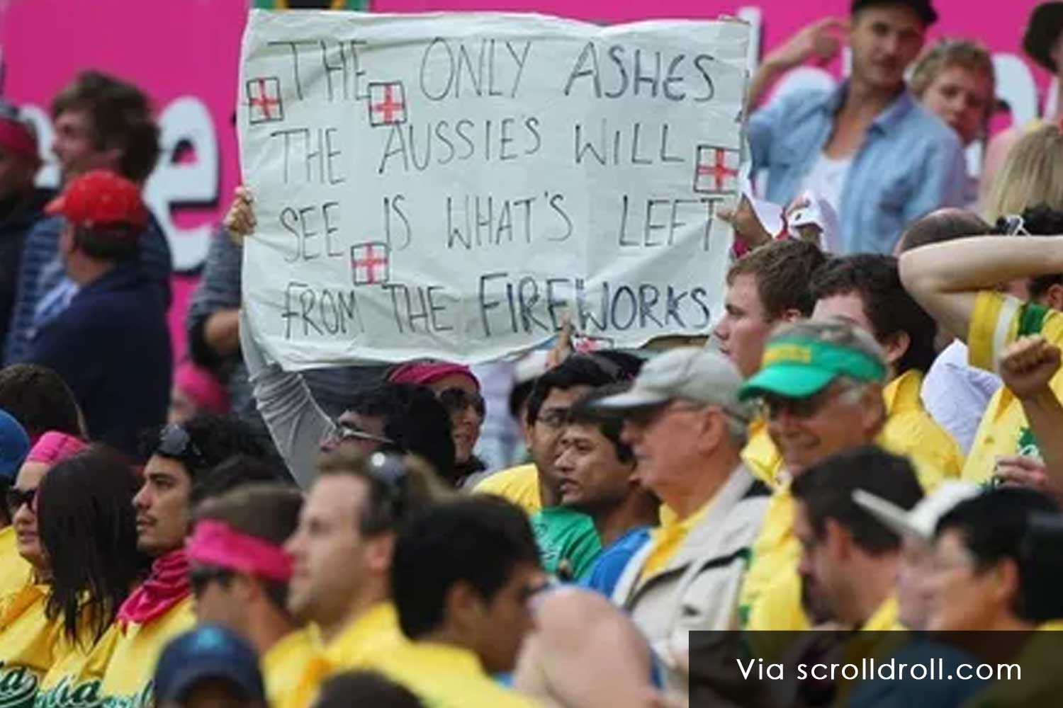 Witty Banners At Cricket Matches (3)