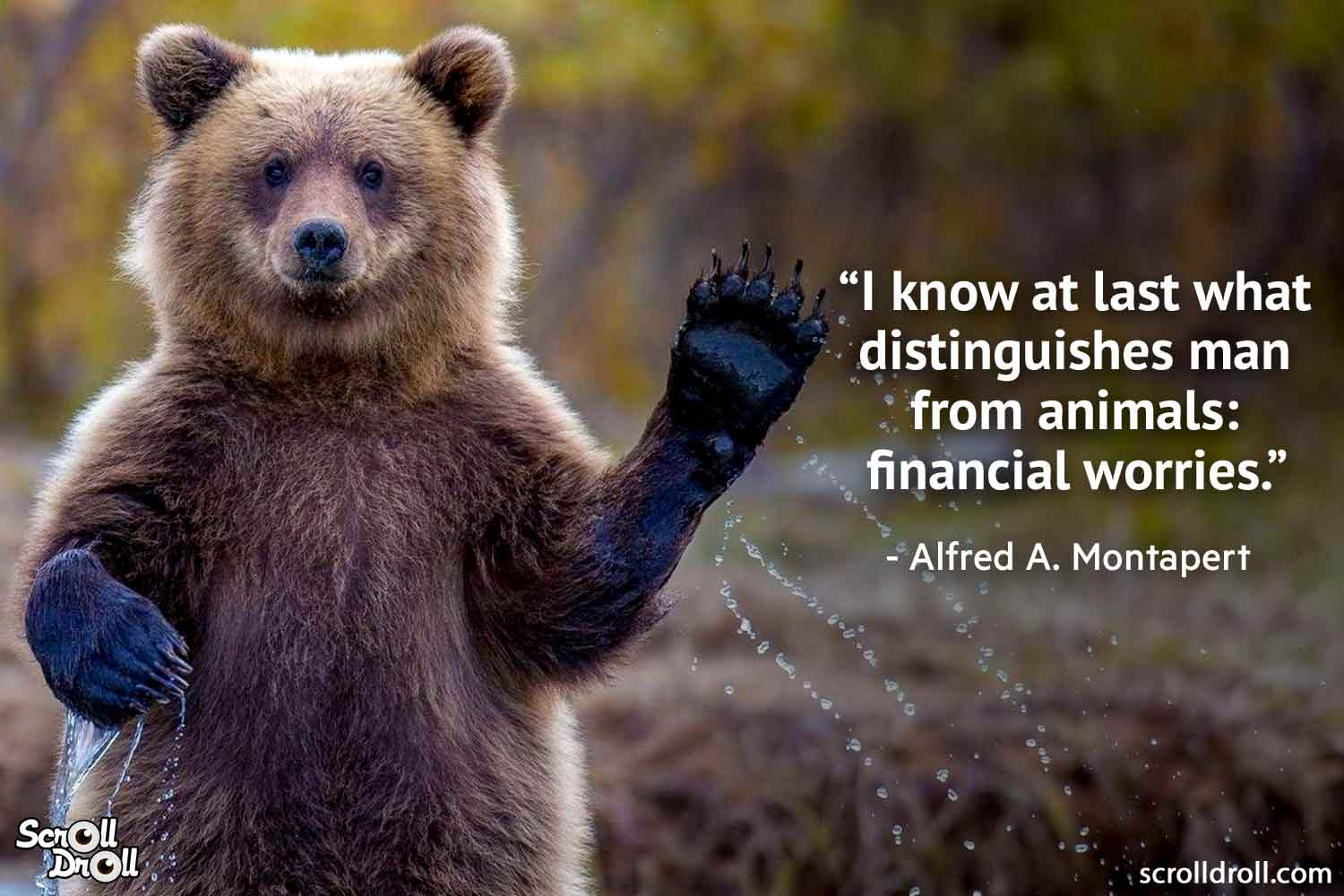 quotes-on-animals-by-famous-people-11