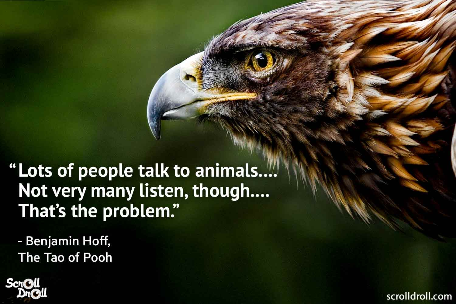 quotes-on-animals-by-famous-people-13