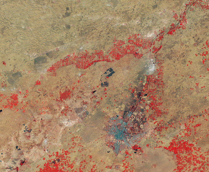 Copernicus Sentinel-2A satellite's false colour image of Thar desert and Bikaner-India From Space