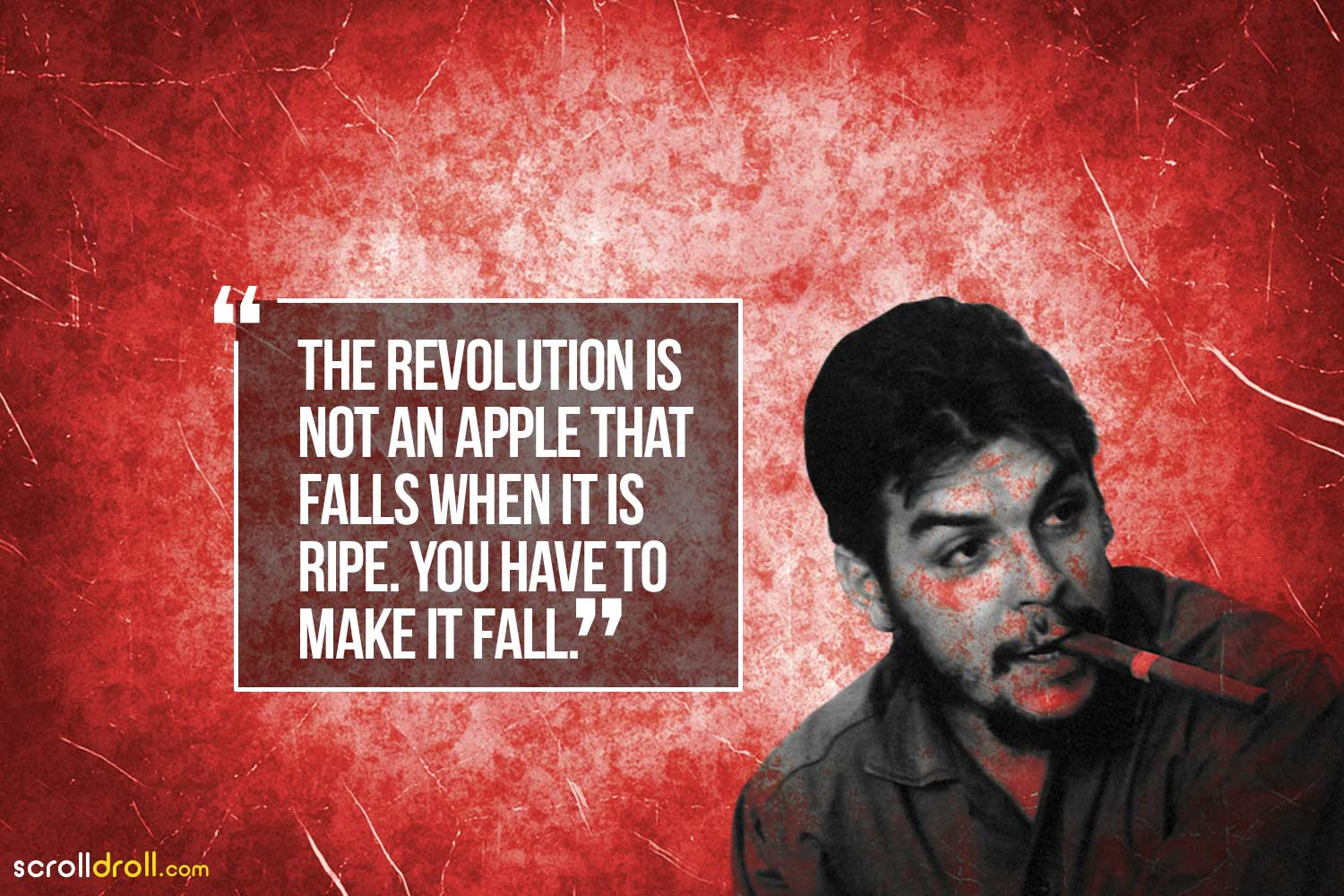 the revolutions not an apple that falls when it is ripe. you have to make it all-che guevara