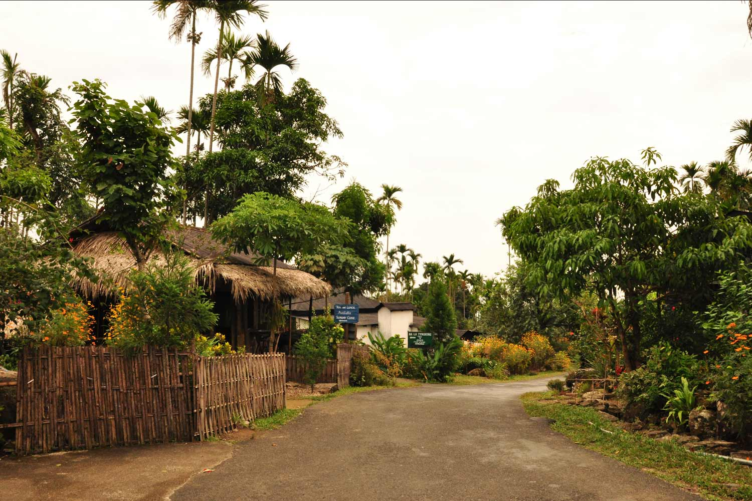 Interesting Places In India- Asia's cleanest village: Mawlynnong