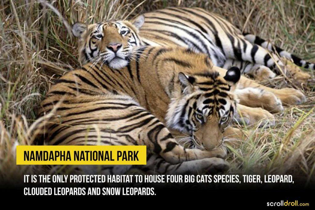 Namdhapa National Park