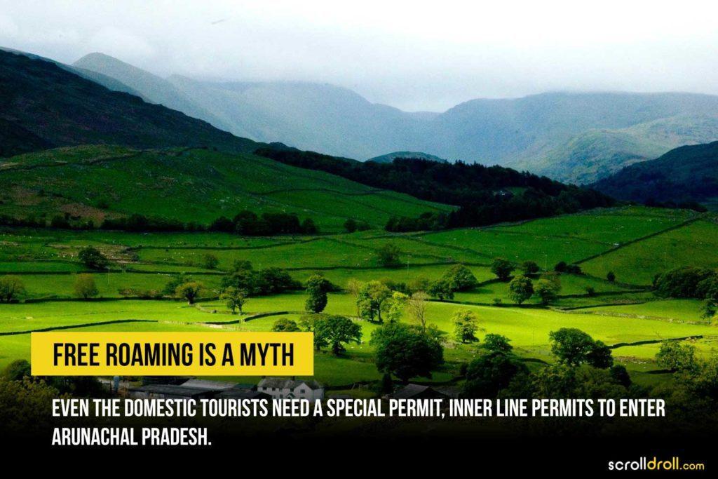 Free roaming is a myth