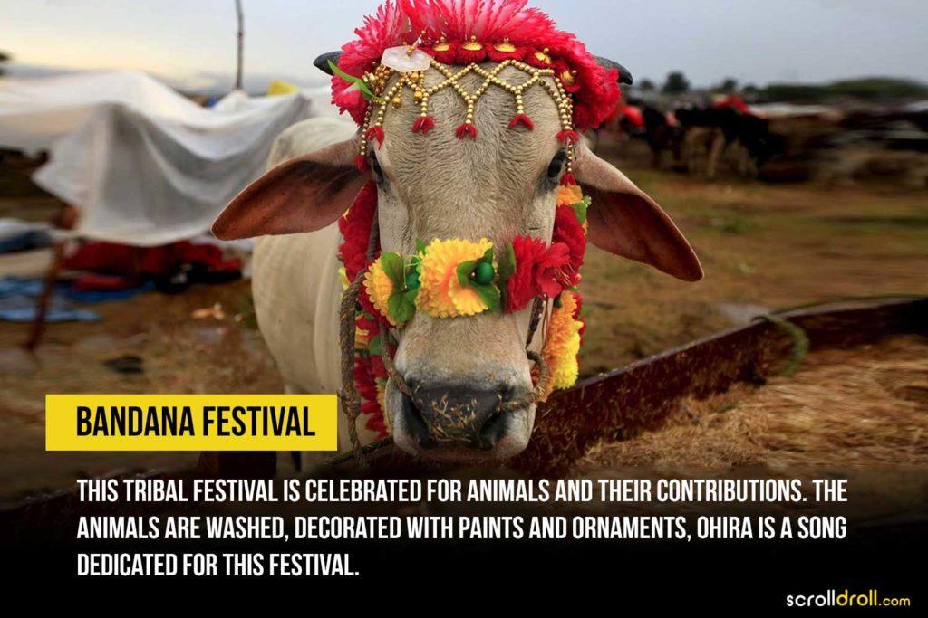 Bandana Festival
