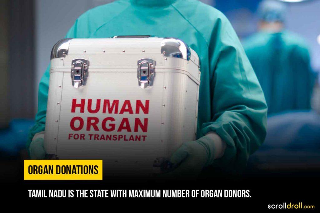 Maximum number of organ donors