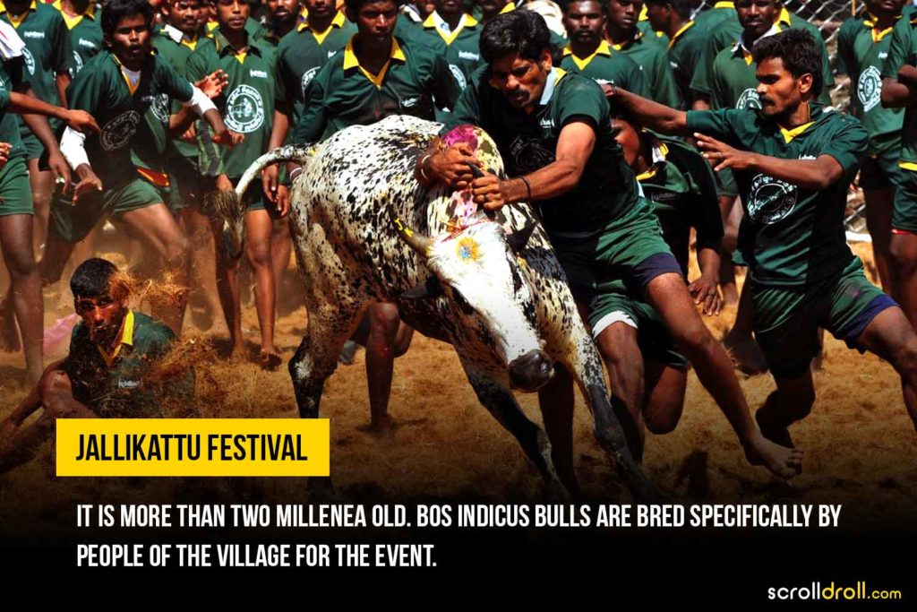 Incredible Facts About Tamil Nadu