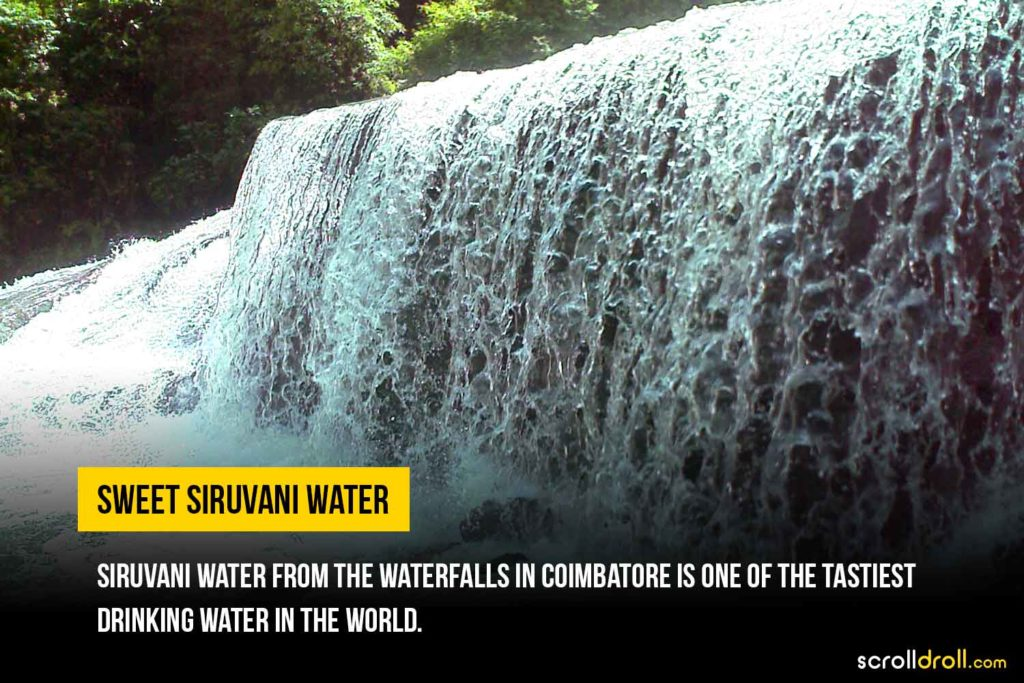 Sweet Siruvani Water