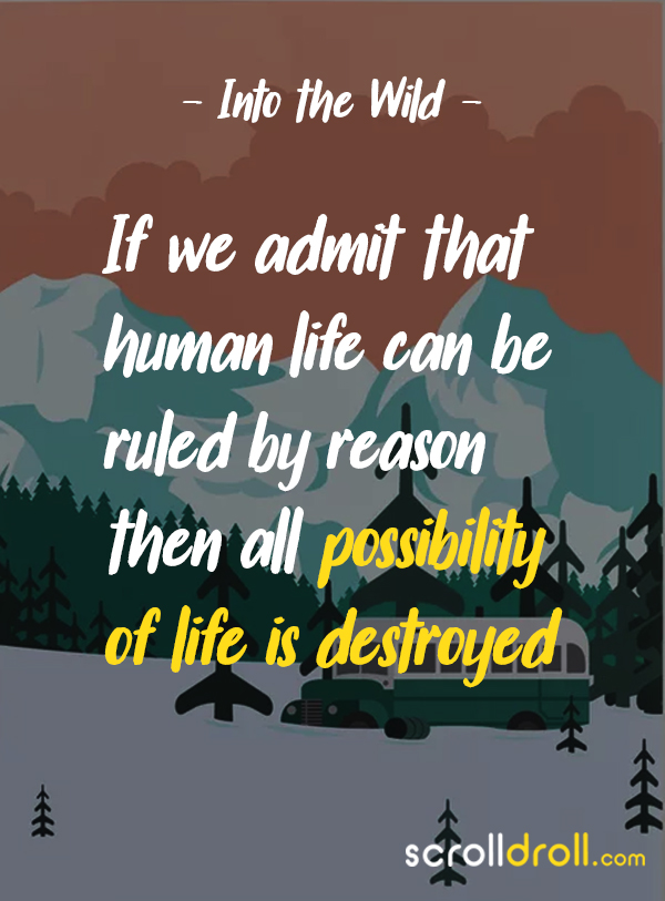 into the wild chapter 4 quotes